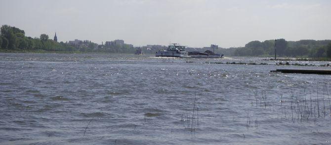 Rheinlese