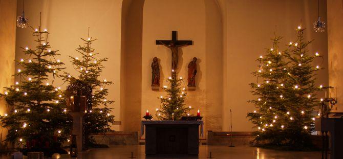 Wie kommen die Christbäume in unsere Kirchen?